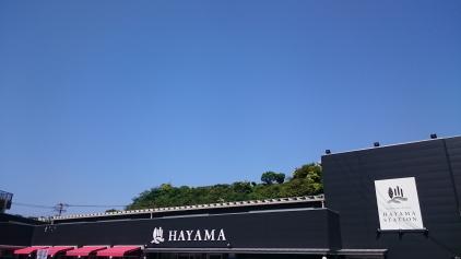 hyama cream 1.JPG