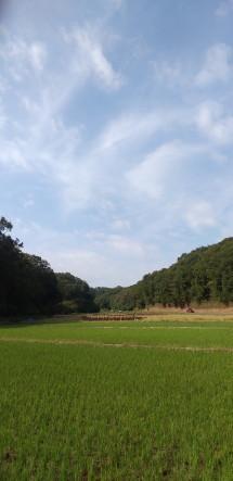 kiritoushi3.JPG