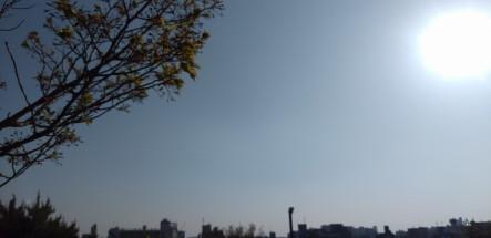 saigouyama1.JPG