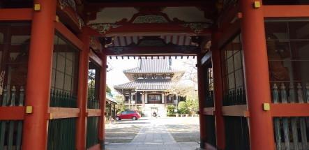 zenkouji5.JPG
